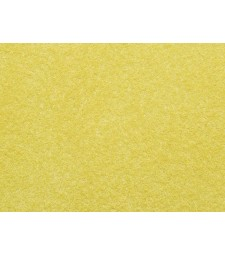 Scatter Grass Golden Yellow 2.5 mm, 20 g