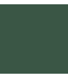 C-320 Mr. Color (10 ml) Dark Green