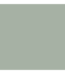 C-325 Mr. Color (10 ml) Gray FS26440