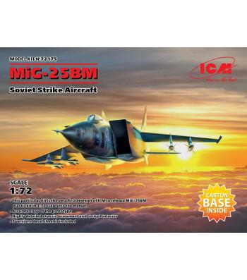 1:72 MiG-25 BM, Soviet Strike Aircraft