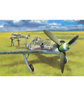 1:48 Focke-Wulf FW190D-13
