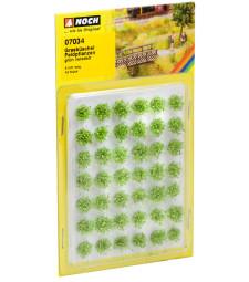 Grass Tufts »Field Plants«