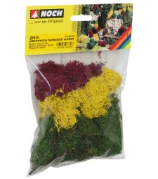 Lichen.  autumn mix. assorted