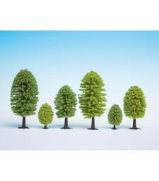 Deciduous Trees, 25 pieces, 5 - 9 cm