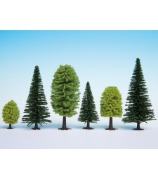Mixed Forest, 10 trees, 5 - 14 cm high