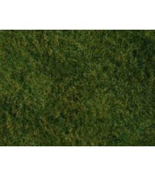 Wild Grass Foliage, light green, 20x23cm