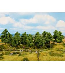 Deciduous Trees (H0, TT) - 16 pieces, 10 - 14 cm high