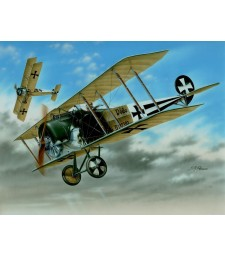 "1:48 Fokker D.II ""Black & White Tails"""
