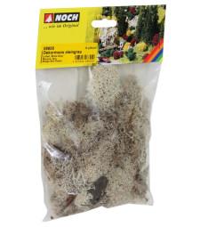 Lichen stone gray, 35 g