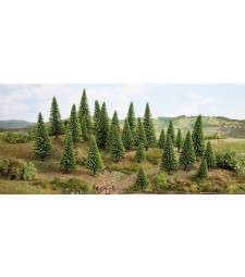 Spruce trees - 5 – 9 cm high, 15 pieces - TREE CUBE