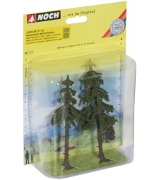 High Trunk Spruce Trees. 2 pcs.. 12,5 and 14 cm