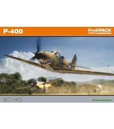 1:48 WWII fighter plane P-400