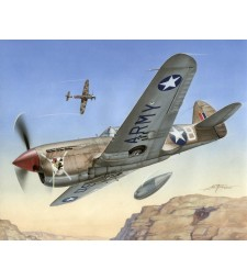 "1:72 P-40 F Warhawk ""Short Tails over Africa"""