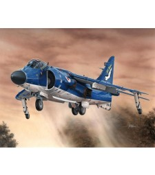 1:72 Sea Harrier FA.2 / reissue