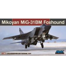 1:48 Mikoyan MiG-31BM/BSM Foxhound